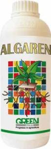 algaren