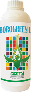 borogreen
